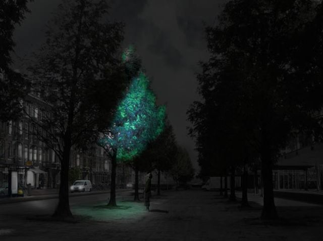 Movie: swap streetlights with luminous trees - Daan Roosegaarde