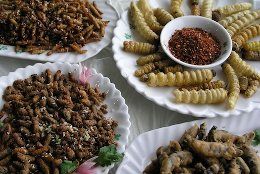https://cqsig.files.wordpress.com/2014/04/dutch-cookbook-insect-recipes.jpg?w=640