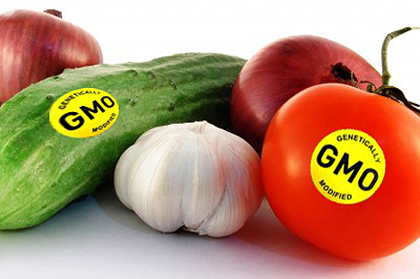 Core Truths: 10 Common GMO Claims Debunked | Popular Science